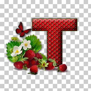 Letter Alphabet K V PNG