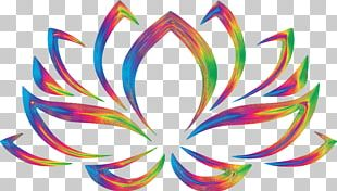 Nelumbo Nucifera Symbol Flower Lotus Position PNG