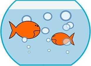 Comet Oranda Aquarium Fish PNG