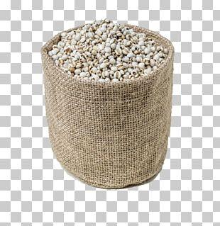 Barley Caryopsis Rice PNG