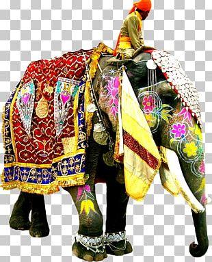 Elephant Festival Indian Elephant African Elephant PNG