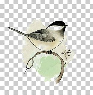 Watercolor Painting Bird Art Drawing PNG