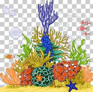 Jellyfish Coral Reef Sea Anemone PNG