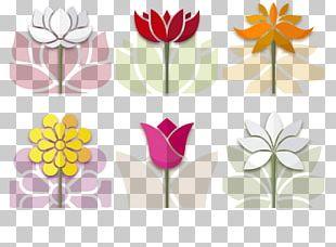 Flower Drawing Illustration PNG