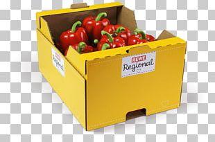 Vegetable Steiner GmbH & Co. KG Green Bell Pepper Capsicum Fruit PNG
