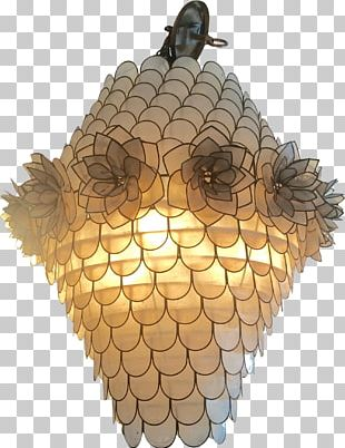 Incandescent Light Bulb Drab Chandelier Windowpane Oyster PNG