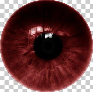 Human Eye Iris Lens Color PNG