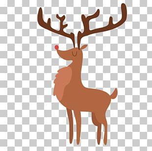 Reindeer Christmas Zazzle PNG