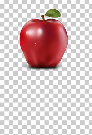 Apple Icon Format Icon PNG