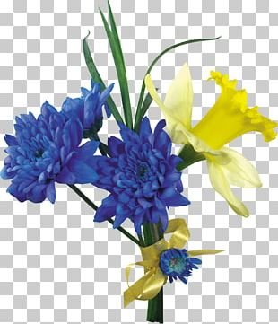 Daffodil Flower Tulip PNG