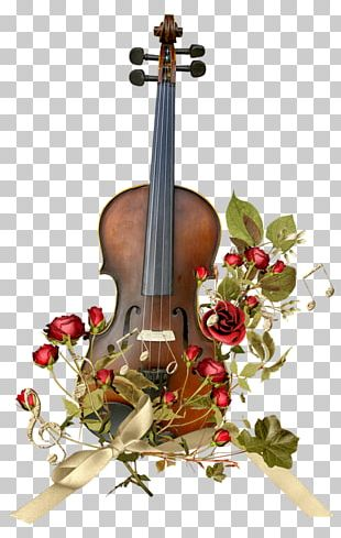 Violin Bow Musical Instrument Cello String PNG