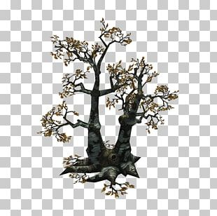 Low Poly 3D Modeling Unity 3D Computer Graphics Tree PNG