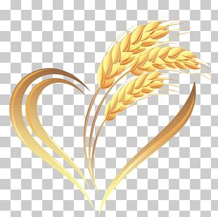 Wheat Heart Cereal PNG