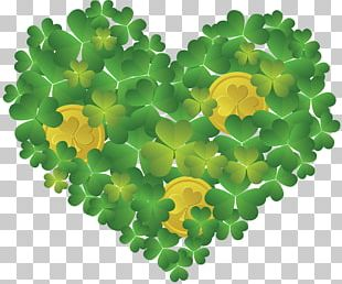 Ireland Saint Patrick's Day Shamrock March 17 PNG
