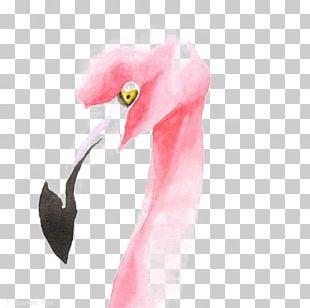 Flamingo Drawing Watercolor Painting Illustration PNG