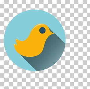 Bird Beak Goose Cygnini Duck PNG