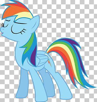 Pony Rainbow Dash Twilight Sparkle Sunset Shimmer Rarity PNG