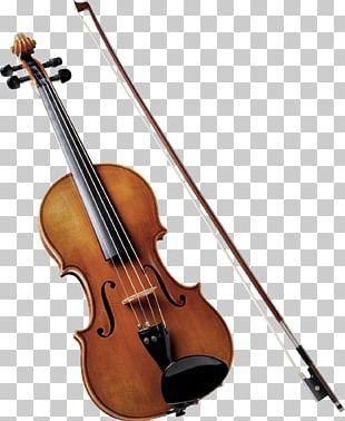 Violin Musical Instruments String Quartet Orchestra PNG