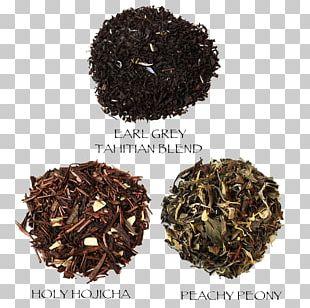 Dianhong Nilgiri Tea Hōjicha Earl Grey Tea Oolong PNG