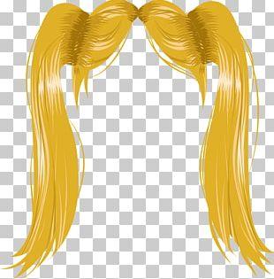 Hair Coloring Hairstyle Bob Cut Wig Long Hair PNG