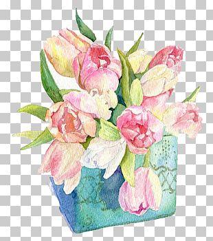 Watercolor Flowers PNG