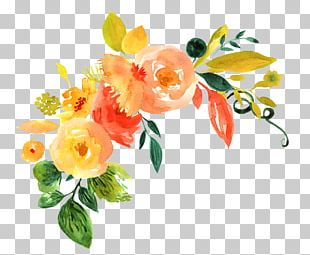 Floral Design Watercolor Painting Watercolour Flowers Watercolor: Flowers PNG