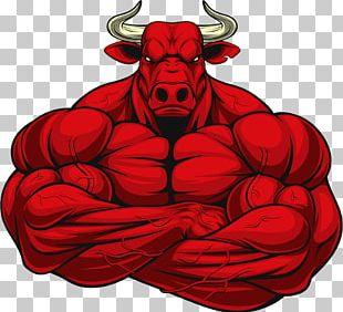 Bodybuilding PNG