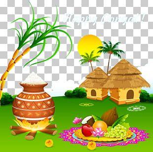 Thai Pongal Makar Sankranti Wish Mattu Pongal Harvest Festival PNG