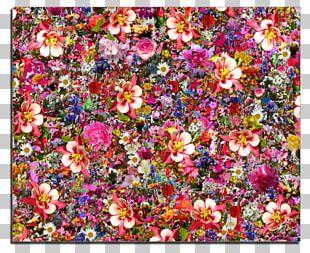 Flower Psychedelia Desktop Psychedelic Art PNG