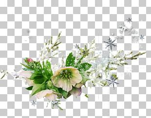 Flower Bouquet Cut Flowers Floral Design PNG