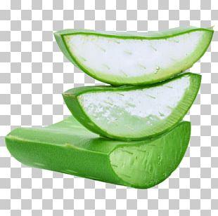 Aloe Vera Dietary Supplement Skin Human Hair Growth Health PNG