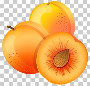 Apricot Fruit Peach PNG
