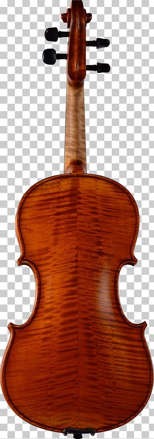 Cello Violin Bow String Instruments Double Bass PNG