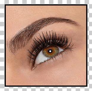 Mascara Cosmetics Eye Shadow Maybelline Eyelash PNG
