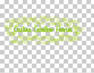 Logo Brand Font Tree Line PNG