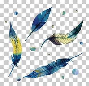 Paper Watercolor Painting Feather Drawing PNG
