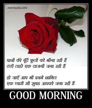 Urdu Poetry Hindi Love Valentine's Day WhatsApp PNG