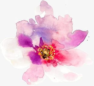 Hand-painted Watercolor Spring Flowers PNG