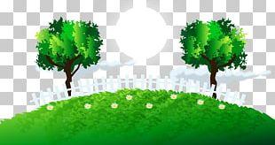 Green Tree Grass Lawn PNG
