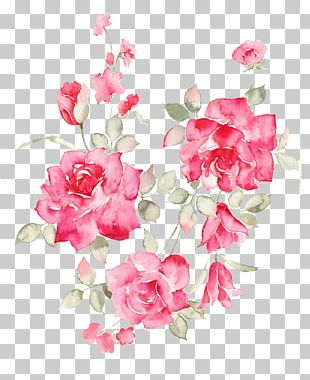 Flower Rose PNG