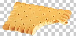 Biscuit Sponge Cake Cookie PNG