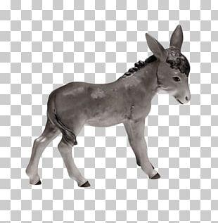 Donkey Foal Goebel Porselensfabrikk Hummel Figurines Mustang PNG