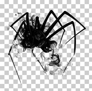 Widow Spiders Sticker PicsArt Photo Studio Drawing PNG