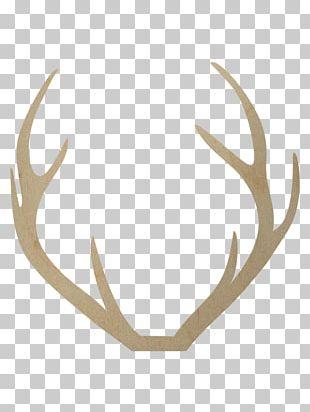 Red Deer Antler Moose Reindeer PNG