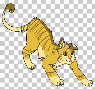 Cat Whiskers Warriors Lionblaze Hollyleaf PNG