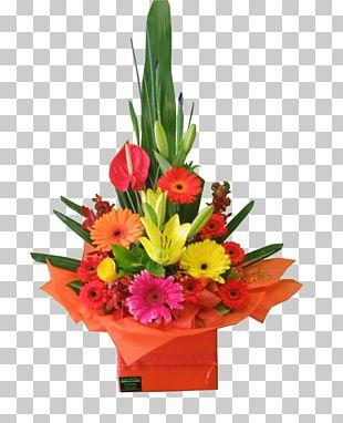 Floral Design Cut Flowers Flower Bouquet Transvaal Daisy PNG