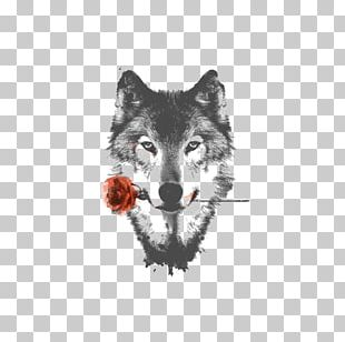 Arctic Wolf HTC Desire HD High-definition Video Display Resolution PNG