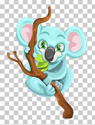 Koala Australia PNG