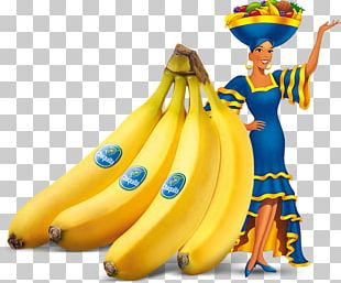 Chiquita Brands International Chiquita Banana Fruit Fyffes PNG