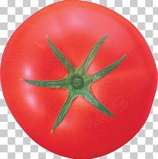 Tomato Dirt 3 PhotoScape Vegetable Fruit PNG